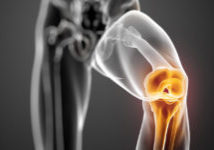 Knee-Joint-highlighted_cropped-1280x640